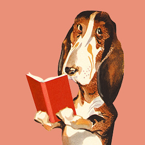 dog with book image